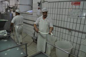 Priprema sira za oblikovanje pletenice